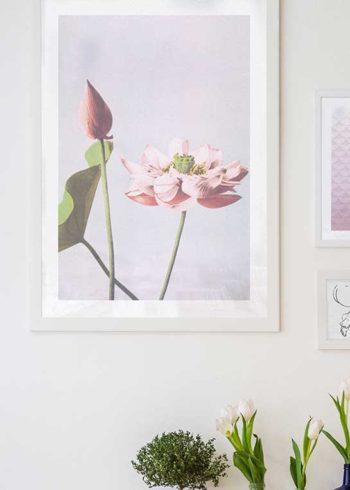 COLORIZED VINTAGE FLOWERS NO. 1 PLAKAT
