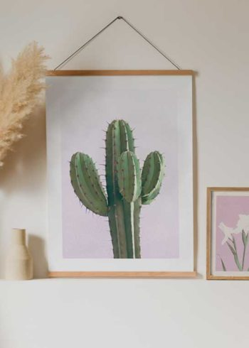 CACTUS ON PINK PLAKAT